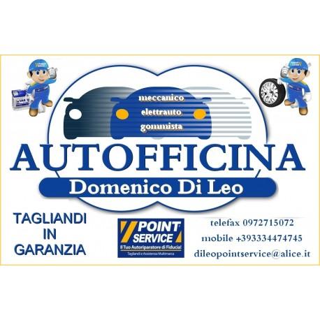 Autofficina Domenico Di Leo